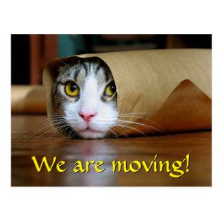 change_of_address_cat_wrap_funny_photo_postcard-r5ff010529e4146dbbc3246ca74139361_vgbaq_8byvr_324